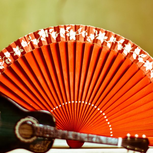 Fan and guitar